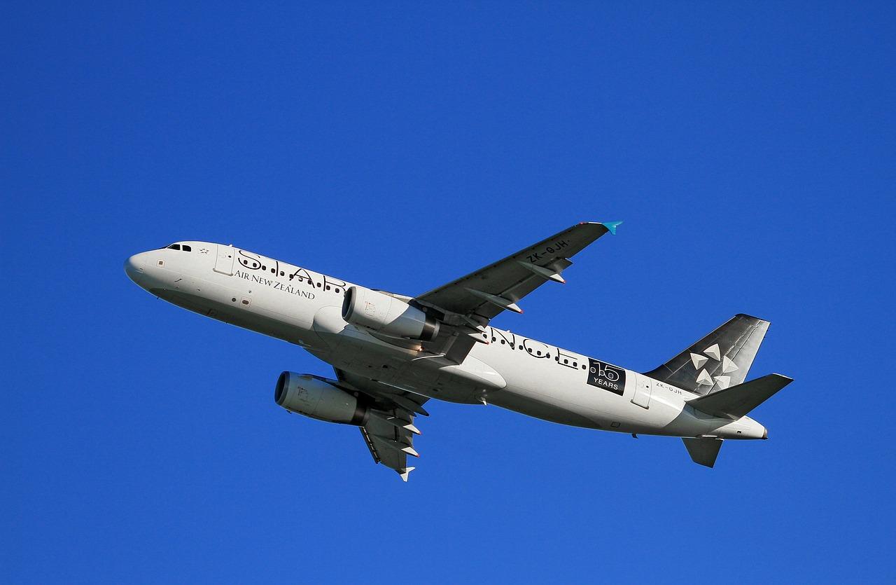 czy warto zostać stewardessa